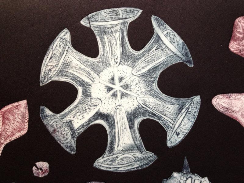 Treasures of the deep detail (3)