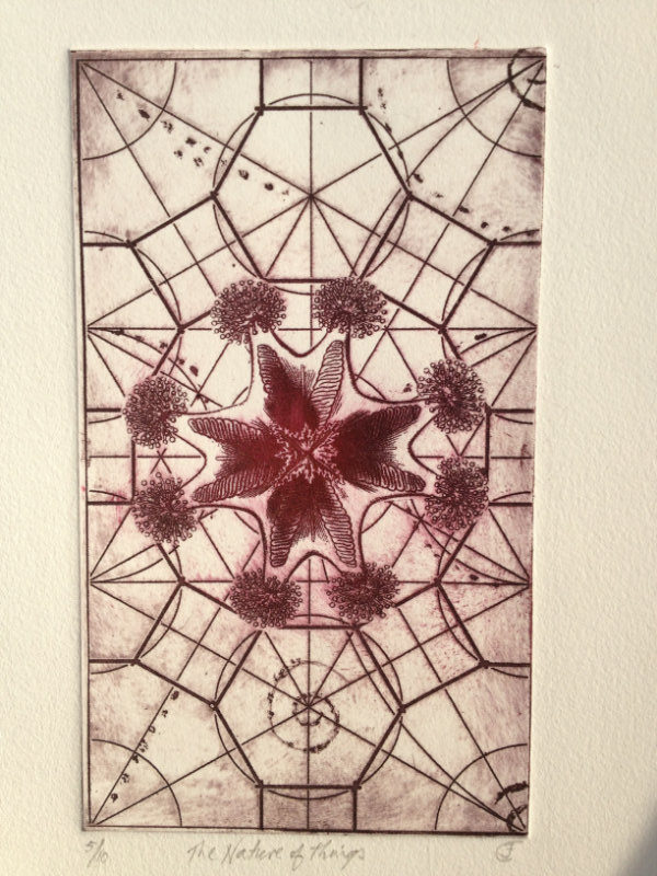 The Nature of Things - Photo Etching